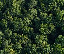 Godrej Reserve