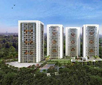 Mittal Brothers Hillside Urban